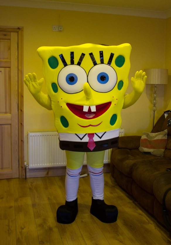 Mascot costumes can be hired at a daily rate of 40 euros plus a refundable deposit. Call 0872374610
