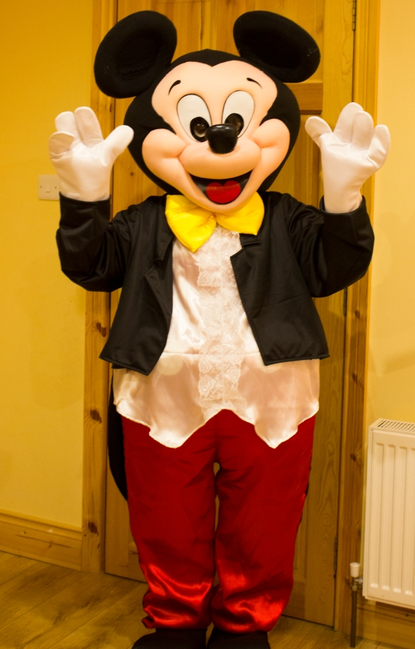 Mascot costume can be hired for a daily rate of 35 euros, plus a refundable deposit. Call/text 087 2374610 to book. Considerable discount if hired with an inflatable.